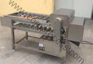 Automatic Corn Section Cutting Machine