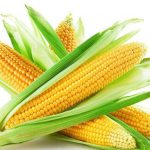 Corn-Processing-Machine-Manufacturer-and-Supplier